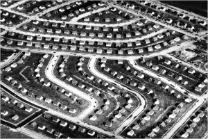 Levittown NY was the first massive subdivision and use of lawn