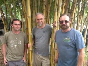 Timothy Lane, Andy Firk & Green Deane