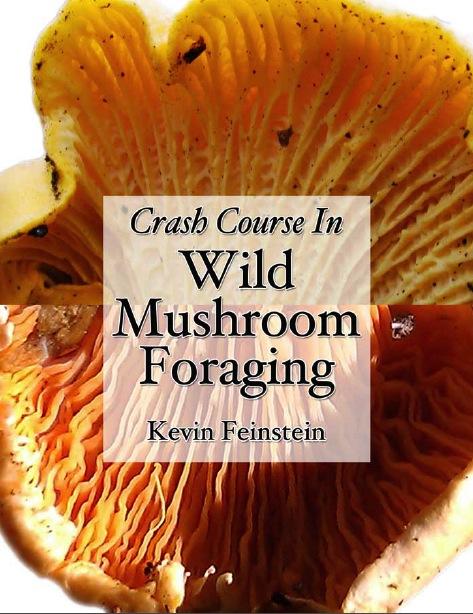 Feral Kevin's new mushroom book.