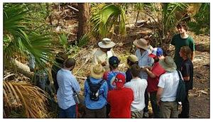 Teaching a foraging class in Port Orange. Photo by Dan Dowling.