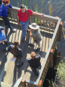 Teaching a foraging class in New Port Richey.