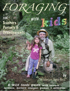 Steve and daughter Violet on the cover of Foraging With Kids.