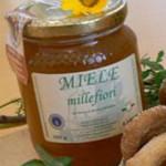 Italian honey made from Black Locus and Tree of Heaven nectar.