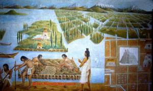 Aztecs farmed with floating matt islands.